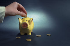 Yellow piggy coin bank. Stock Image