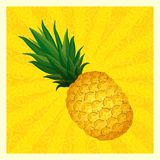 Yellow pineapple background- vector illustration Stock Photo