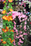 Yellow and Pink Artificial flowers colorful. Stock Image