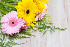 Yellow and pink flowers on wooden background Royalty Free Stock Image