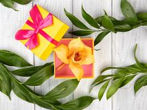 Yellow and pink gift box with orchid and green leaves. On white wooden background stock photos