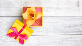 Yellow and pink gift box with orchid and green leaves. Yellow and pink gift box with orchid on white wooden background stock images