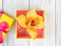 Yellow and pink gift box with orchid and green leaves. Yellow and pink gift box with orchid on white wooden background stock photography