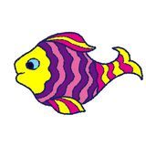 Yellow pink lilac fish on a white background royalty free stock photos