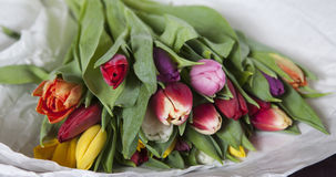 Yellow, pink, red, violet tulips. Lying on paper Royalty Free Stock Photos