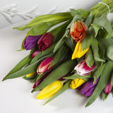 Yellow, pink, red, violet tulips. Lying on paper Royalty Free Stock Image