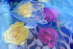 Yellow and pink roses on a leopard pattern scarf beneath a blue scarf with a pattern of roses. Decorations, flowers Royalty Free Stock Photo