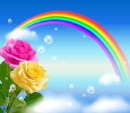 Yellow and pink roses and rainbow Stock Photography