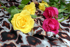 Yellow and pink roses on a scarf with leopard pattern. Decoration, flowers Stock Photos