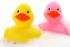 Yellow and pink rubber ducks Stock Photo
