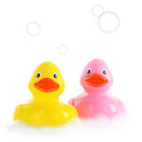 Yellow and pink rubber ducks Stock Image