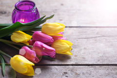 Yellow and pink spring tulips and  violet candle on vintage wood Royalty Free Stock Image