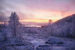 Yellow-pink sunset over snow-covered mountain. Forest, houses and bay Stock Images