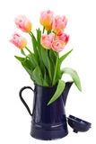 Yellow and pink tulips bouquet Royalty Free Stock Image