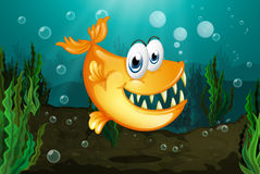 A yellow piranha near the seaweeds. Illustration of a yellow piranha near the seaweeds Royalty Free Stock Image