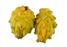 Yellow Pitahaya. Royalty Free Stock Photos