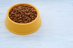 Yellow plastic bowl full with dog food stock images
