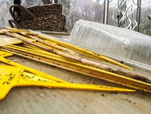 Yellow plastic tags with vegetable names stacked on a work bench stock photo