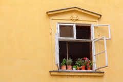 Yellow platered wall with open window Royalty Free Stock Photos