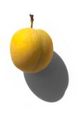 Yellow plum. One tasty yellow plum with shadow Stock Photography