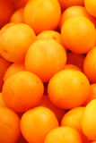 Yellow plum Royalty Free Stock Images