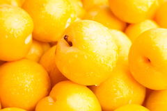 Yellow plum Royalty Free Stock Photos