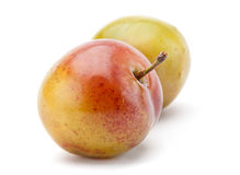 Yellow plum fruit Royalty Free Stock Photos