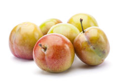 Yellow plum fruit Stock Images