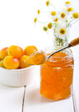 Yellow plum marmalade Stock Images