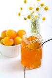 Yellow plum marmalade Royalty Free Stock Photos