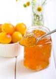 Yellow plum marmalade Royalty Free Stock Image