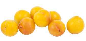 Yellow plum Stock Images