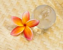 Yellow plumeria and crystal globe Stock Photos