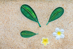 Yellow plumeria flower on stone wall Stock Images