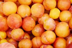 Yellow plums background Royalty Free Stock Images