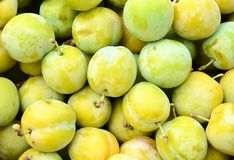 Yellow plums Royalty Free Stock Photography