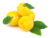 Yellow plums with leaves Royalty Free Stock Photography