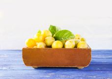Yellow plums. Ripe fruits in a wooden box on white background. Fresh yellow plums. Ripe fruits in a wooden box on white background stock photos