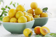 Yellow plums, summer still life Stock Image