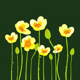 Yellow poppies on green background. Illustration pf yellow poppies on green background Stock Images