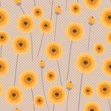 Yellow poppy Stock Photos