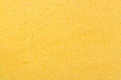 Yellow porous bast whisp surface Stock Photography