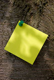 Yellow Post-It on a Tree Royalty Free Stock Photo