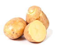 Yellow potato Stock Images