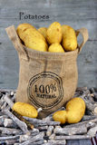 Yellow potatoes in a jute bag Stock Photography