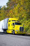 Yellow powerful semi truck with reefer trailer on autumn road Stock Photos