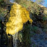 Yellow precipitation of sulphur at a secondary source of the hot springs of Main near Madaba just before the Dead Sea. Jordan Stock Photography