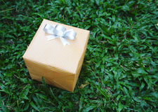 Yellow present box Royalty Free Stock Images
