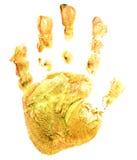 Yellow print baby palm Stock Photos