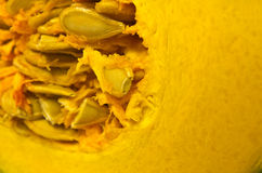 Yellow pumpkin Royalty Free Stock Images